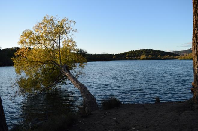 spring lake (2)
