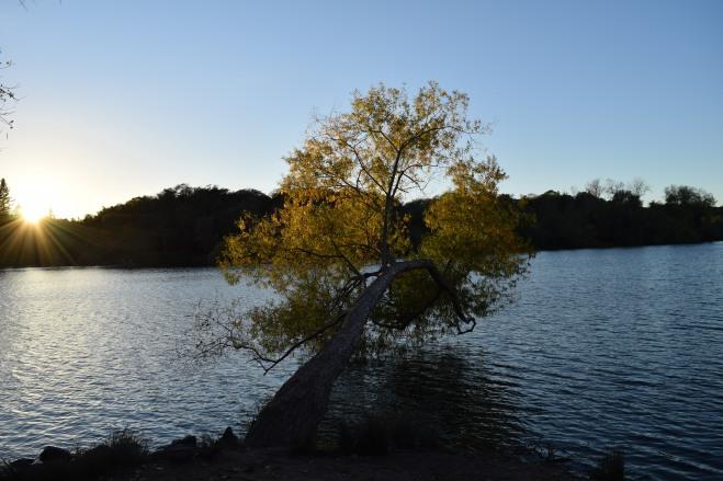 spring lake (3)
