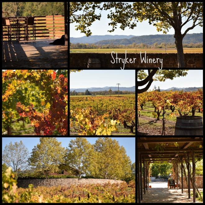 Stryker Winery Alexander Valley