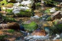 Devils Punchbowl Falls, Napa Valley